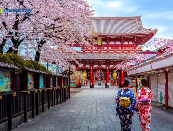 Danh sách các trường tại Nhật Bản
